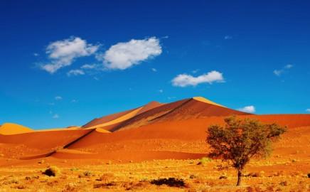Namibia, Botswana e Zimbabwe: Capodanno 2019 e oltre: Itenga Safari