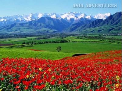 Kyrgzystan: colori del Kyrgzystan